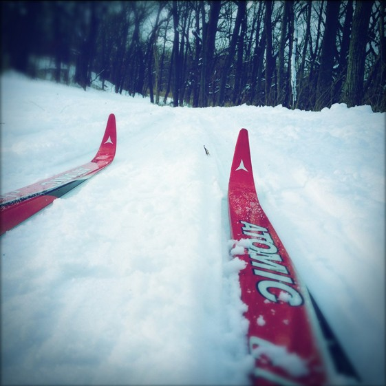 Cross country skiing in Lemont, yes Lemont…