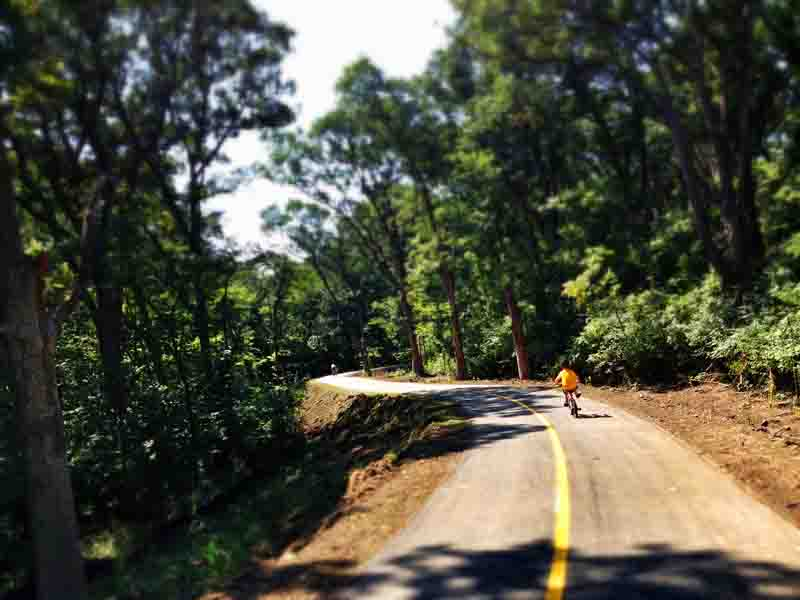 New Veterans Hwy Trail - Bluff Rd