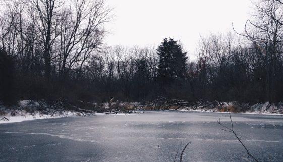 Hidden Pond at Oldfield Oaks
